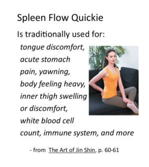 Jin Shin self help quickie Spleen Flow video recording