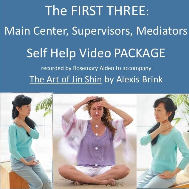 Jin Shin Self Help Main Center Supervisors Mediators Video Recordings